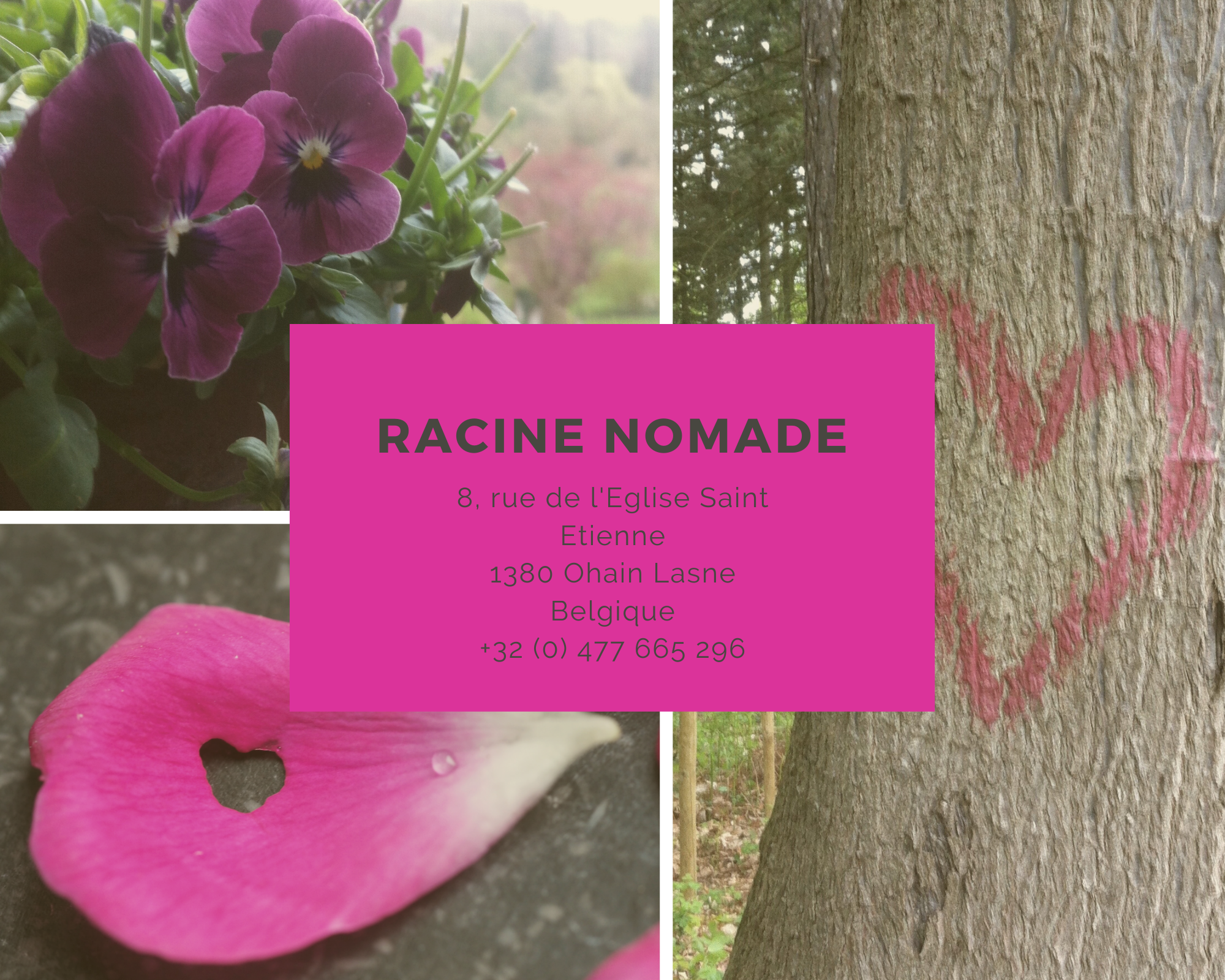 RACINE NOMADE contact